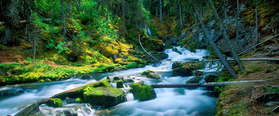 Sarrail creek, Kananaskis Alberta Canada